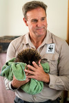 WWF-Australia CEO Dermot OGorman meeting injured wildlife in care and deploying hay bales with Wildcare