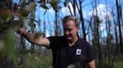BROLL: Dermot OGorman - Regenerate Australia, Kangaroo Valley